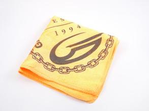 Gateway Towel